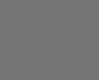 ParDois-400